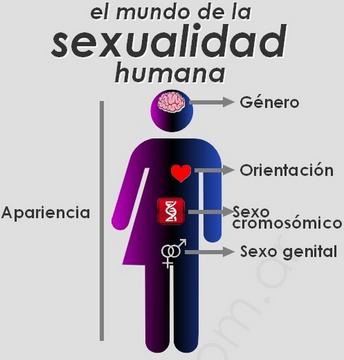 El mundo de la sexualidad humana LGTBIQ+